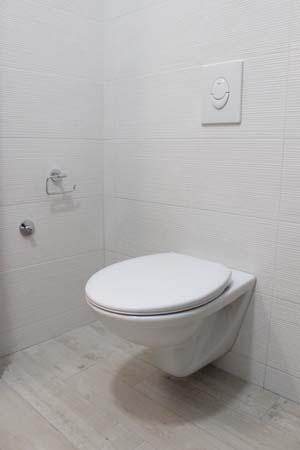 white toilet flush