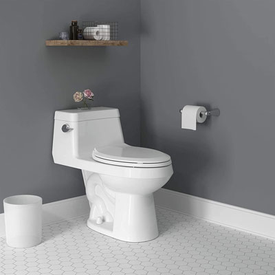 american standard colony toilet review