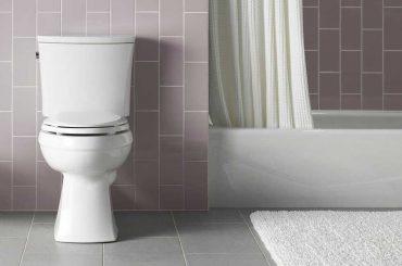 kohler kelston toilet review